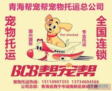 祁连宠物托运找青海西宁帮宠帮宠物托运公司安全放心