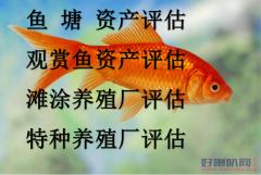 福州鱼塘拆迁损失评估、福州虾塘征收补偿评估