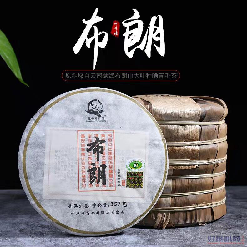 云南叶片情茶业 普洱茶工厂批发